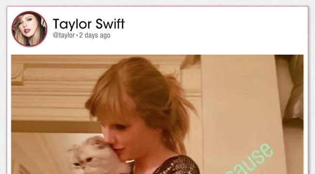 Taylor Swift S App The Swift Life Is A Super Positive