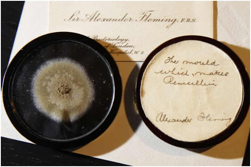 Genome of Alexander Fleming's 92-Year-Old Mould That Led to Discovery of Penicillin Sequenced