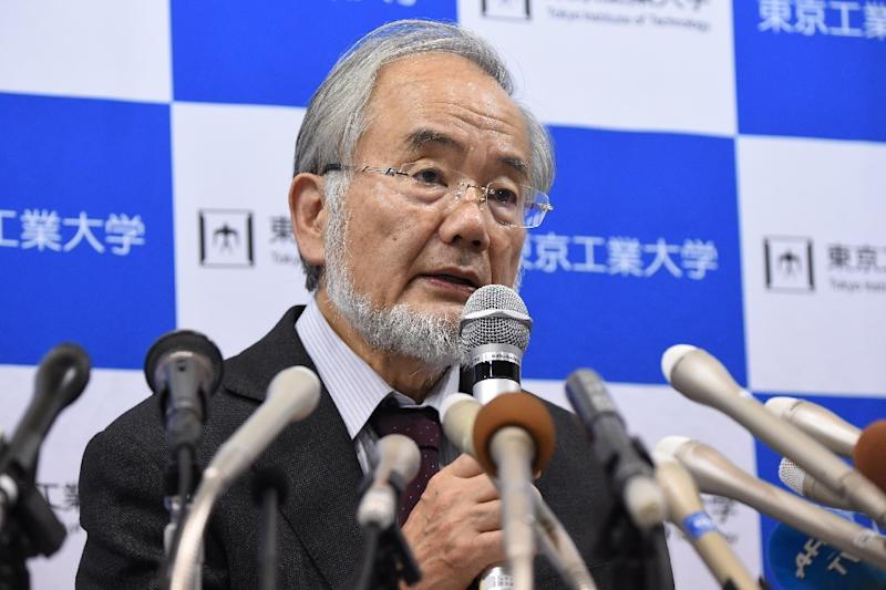 Japan's Yoshinori Ohsumi wins medicine Nobel