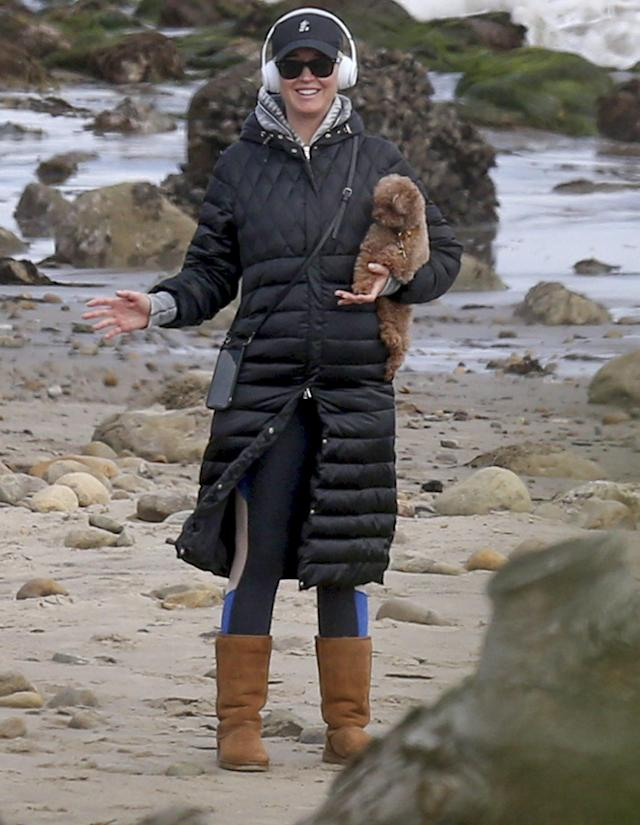 <p>Katy Perry totes her pup during a walk on the beach in Los Angeles on Friday.</p>