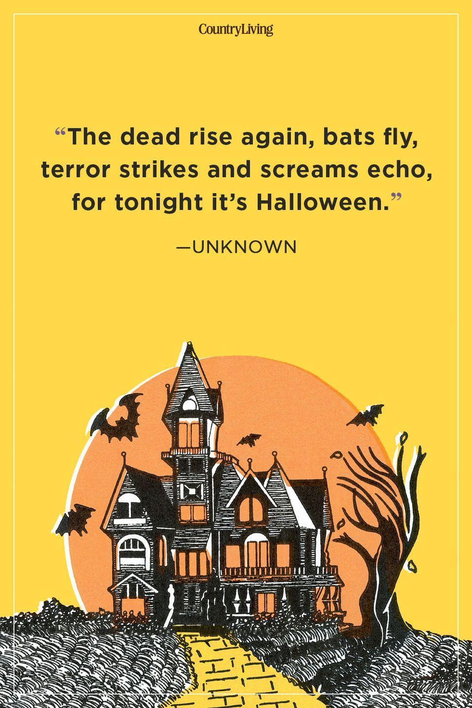 """<p>""""The dead rise again, bats fly, terror strikes and screams echo, for tonight it's Halloween.""""</p>"""