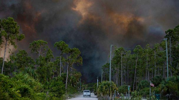 PHOTO: Smoke from a brush fire in Golden Gate Estates is seen from Dove Tree Lane on May 13, 2020 in Florida. (Jon Austria/Naples Daily News via USA Today)