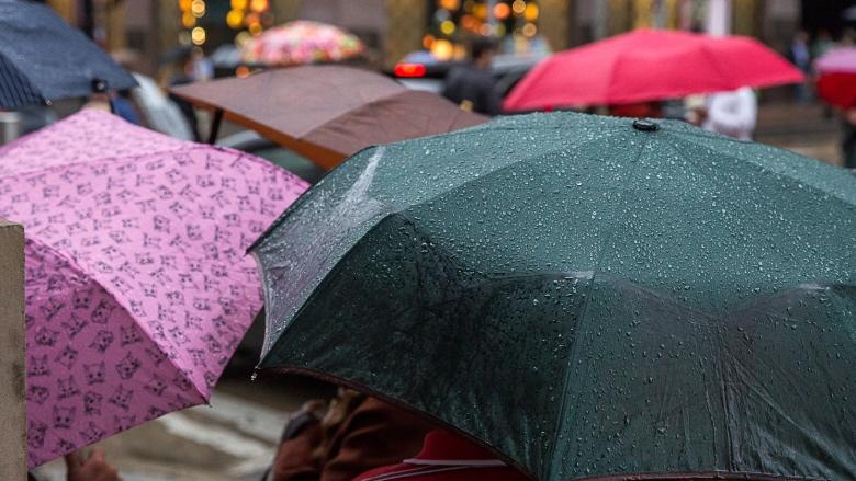Here come May showers: a rainy day guide for the next week in Montreal