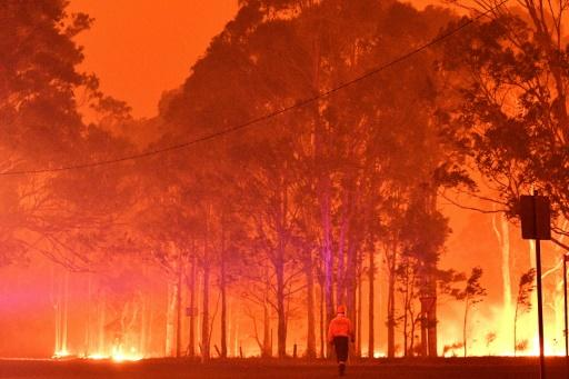 Temperatures were likewise higher than normal in New South Wales in Australia, where massive bushfires devastated large areas of the state
