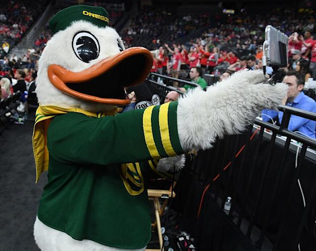 <p><strong> 14. Oregon</strong><br>Top 2017-18 sport: softball. Trajectory: Down. The Ducks' 24th-place finish was their lowest of the past five years, and a 15-spot plummet from last year. This was the first time since 2006 that the running powerhouse failed to win at least one national title. </p>