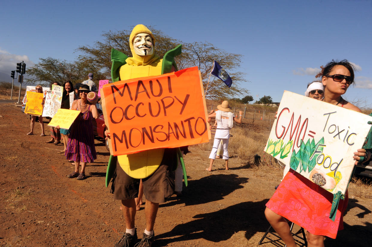 Protesters in Maui rally against Monsanto in 2012. (Photo: Steve Schapiro/Corbis via Getty Images)