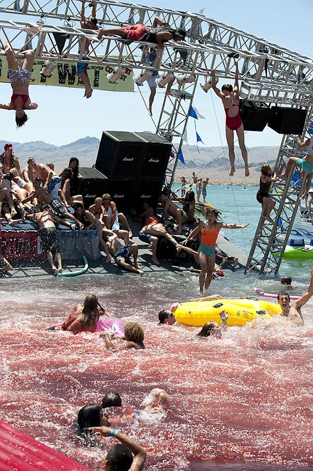 "<b>""Piranha 3D"" </b>(2010) <br>Spring break at the lake gets disrupted by a violent school of per-historic flesh-eating piranha, and only Elizabeth Shue and Ving Rhames can save the scantily clad revelers. While it was by no means a bad idea to make this movie (the underwater cinematography deserved some sort of award), the kids in this gore-fest make some of the worst decisions ever. There are man-eating piranhas in the water… Get out of the water. It's that simple!"
