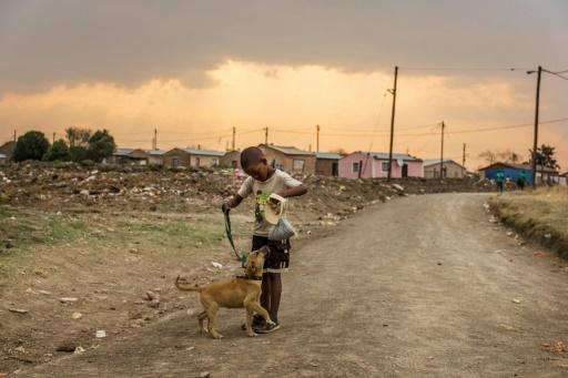 A World Bank report earlier this year declared that South Africa was the most unequal society in the world
