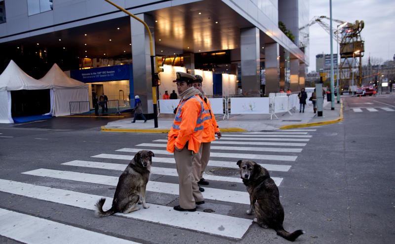 Two street dogs sit next to police standing guard in front of the hotel where the International Olympic Committee (IOC) Executive Board meetings and the 125th IOC session are being held in Buenos Aires, Argentina, Thursday, Sept. 5, 2013. During the Sept. 4-10 meetings, members will elect the host city for the 2020 Summer Olympics Games, with candidates being Madrid, Istanbul and Tokyo, as well as choose a new IOC president and add a sport to the 2020 program. (AP Photo/Natacha Pisarenko)