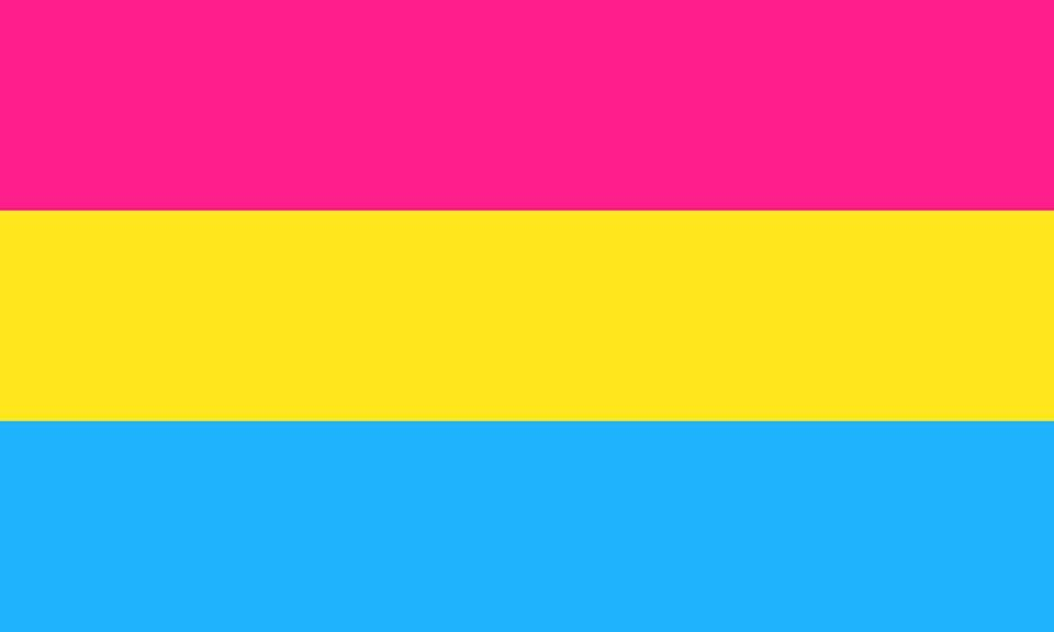 """<p>This flag, for example, represents pansexuality's interest in all genders: Pink for women, blue for men, yellow for """"nonbinary and gender-nonconforming people."""" It was created in 2010 to distinguish pansexuality from bisexuality.</p>"""