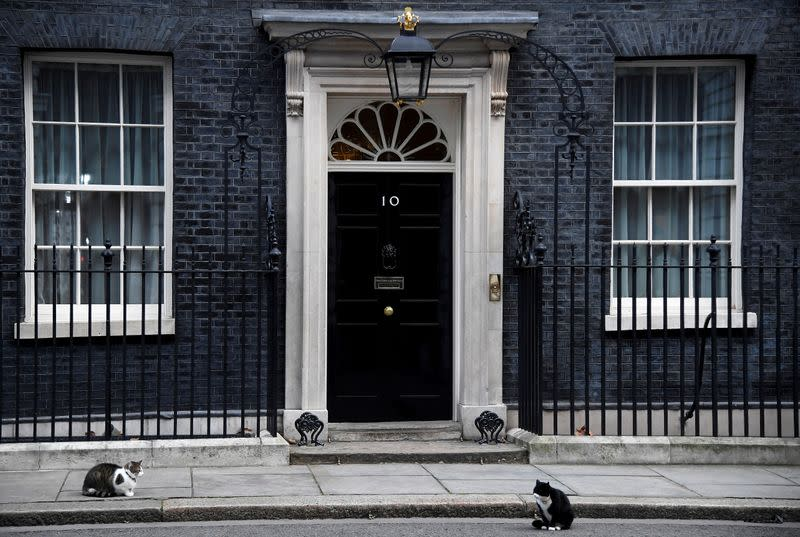 FILE PHOTO: Larry the Downing Street cat and Palmerston the Foreign Office cat square off outside British Prime Minister's official residence 10 Downing Street, London