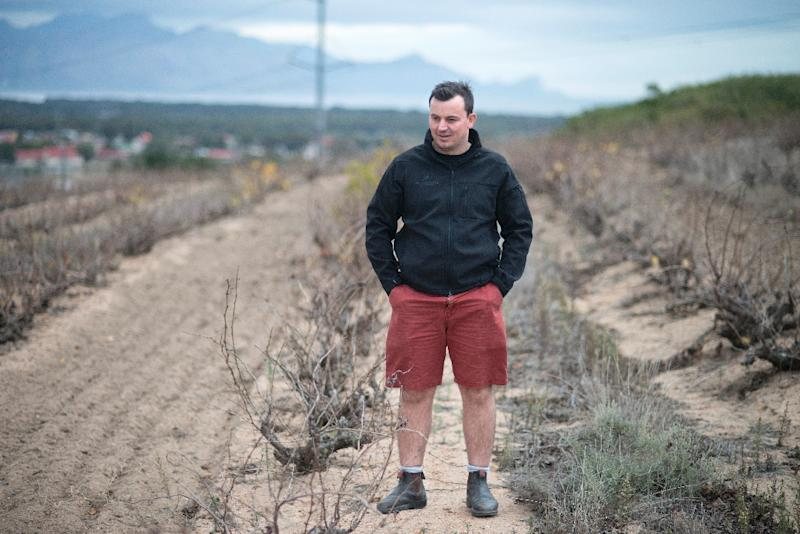 Graped from bush vines have much thicker skins and therefore produce more concentrated flavours, says RJ Botha (AFP Photo/Rodger Bosch)