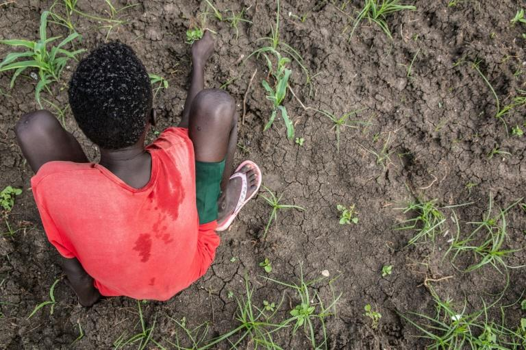 Farming offers hope for some of the former child soldiers of South Sudan