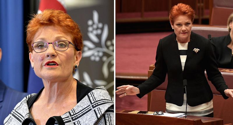 One Nation leader Pauline Hanson (pictured) was mocked online over her anti-white racism tweet.