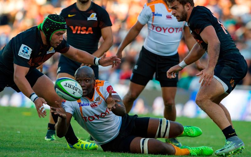 On the carpet:Argentina's Jaguares have joined the competition but the Cheetahs maye be culled from it - AFP