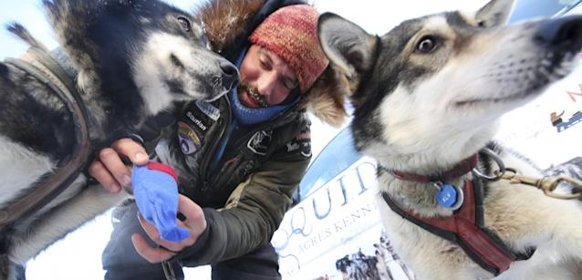 <p>Race veteran Cody Strathe of Fairbanks, Alaska booties one if his lead dogs Nukluk, left, as his dog Sable, right, looks on as Strathe prepares his team in the staging area during the restart of the Iditarod Trail Sled Dog Race in front of Pike's Waterfront Lodge, March 6, 2017 in Fairbanks, Alaska. It's the third time the starting location of the 1,000-mile trek to Nome, Alaska has been moved from Anchorage to Fairbanks due to low snow and poor trail conditions south of and through the Alaska Range. (Eric Engman/Fairbanks Daily News-Miner via AP) </p>