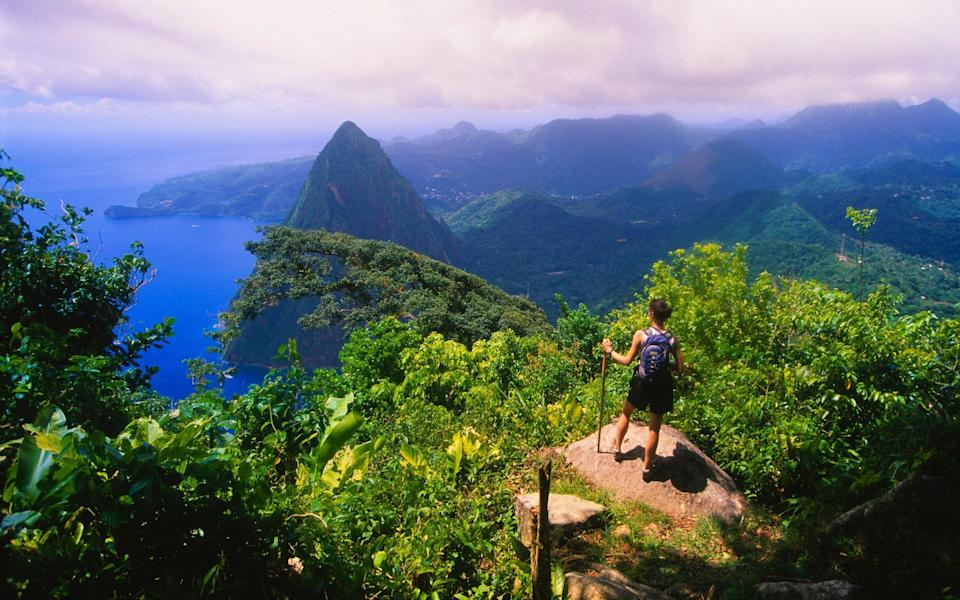You'll want to head to St Lucia for the scenery as much as to flop on the beach - Getty