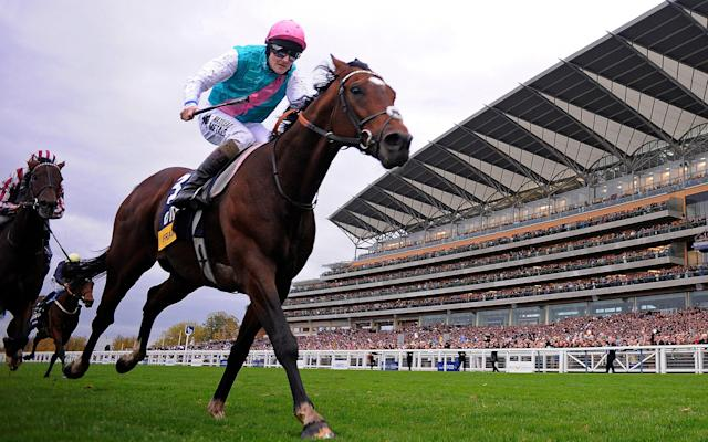 <span>The cost of a visit to Frankel is £125,000</span> <span>Credit: getty images </span>