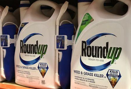 Monsanto Co's Roundup is shown for sale in Encinitas, California, U.S., June 26, 2017.  REUTERS/Mike Blake
