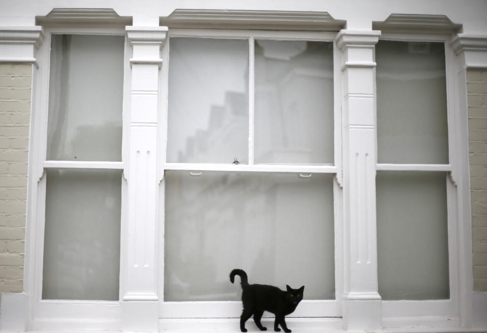 A black kitten waits to be let back into its home in Wimbledon, south west London July 30, 2013. Property prices are rising at their fastest pace in three years, according to Nationwide, a building society. In London, the best-performing region, prices are already 5 percent above their 2007 peak. Photograph taken on  July 30, 2013.  REUTERS/Andrew Winning  (BRITAIN - Tags: BUSINESS REAL ESTATE)