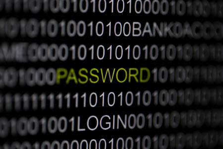 File picture illustration of the word 'password' pictured on a computer screen, taken in Berlin May 21, 2013. REUTERS/Pawel Kopczynski/Files
