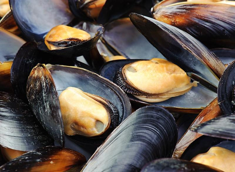 Fish ranked Mussels