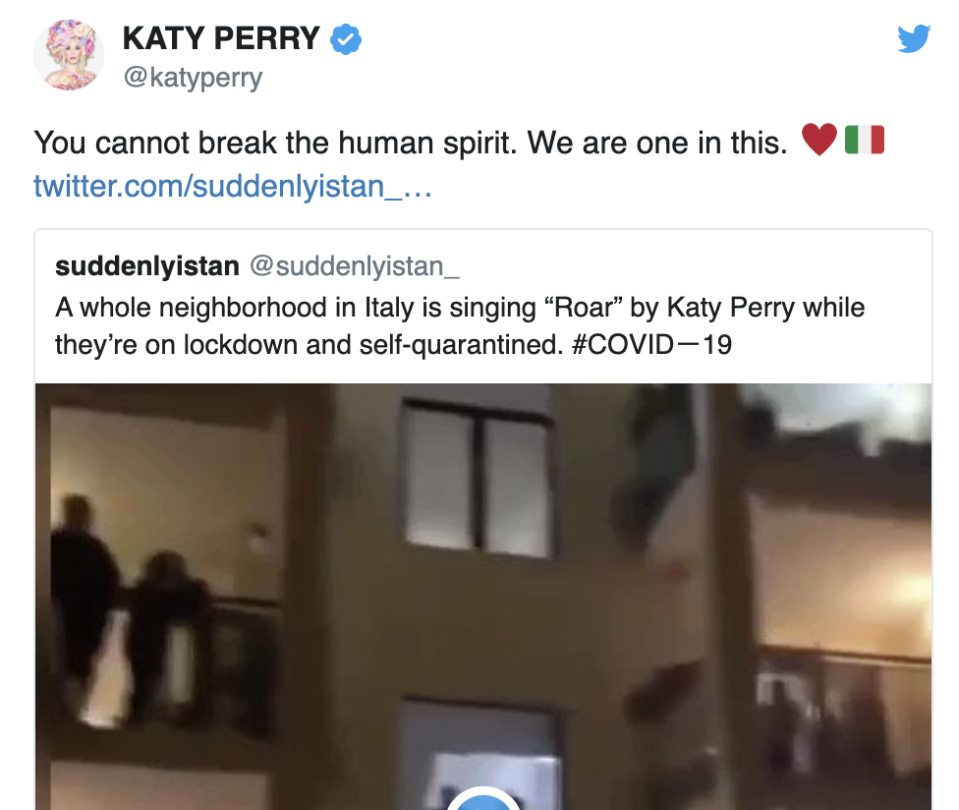 Katy Perry duped in coronavirus hoax. (Twitter)