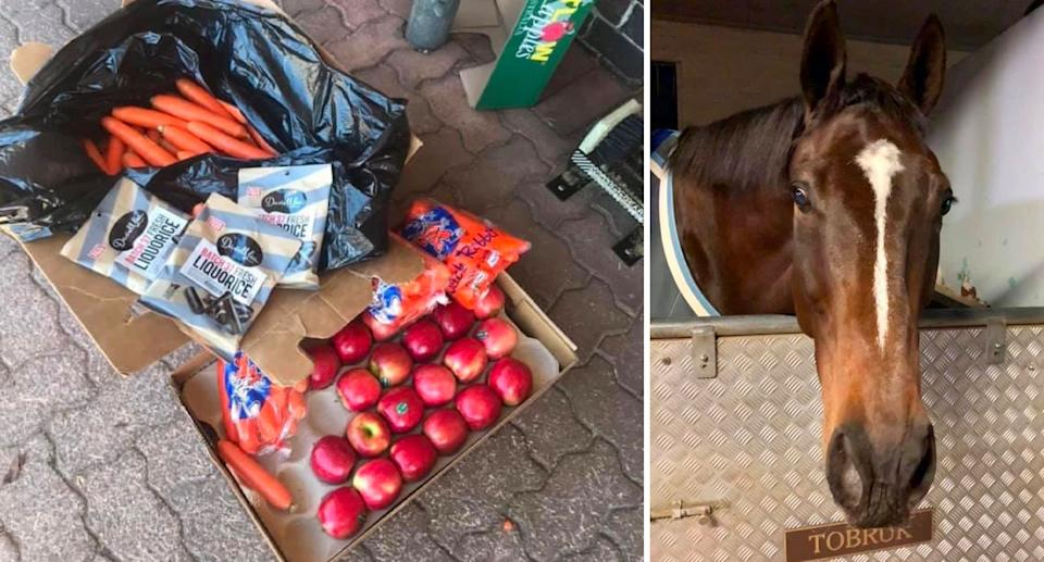 Tobruk's gifts after Saturday's protests. Source: NSW Mounted Police