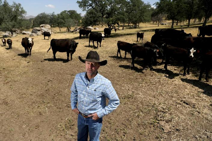 John Guthrie on his cattle ranch and farm with cattle behind him.