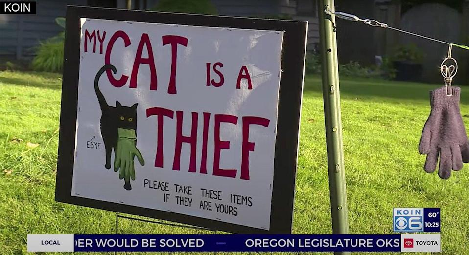 Woman Warns Neighbors That Her Cat is a Thief