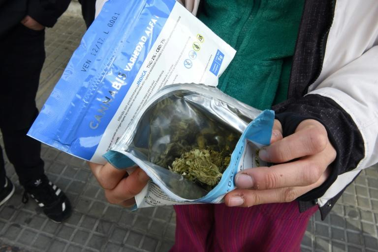 A man shows two envelopes containing marijuana he just purchased at a pharmacy in Montevideo, on July 19, 2017