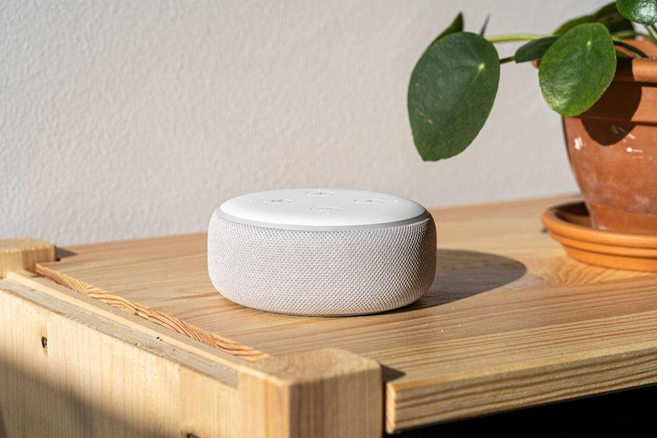 VIENNA,AUSTRIA - December 4 2019: Amazon Alexa Echo on a wooden bench with green plants in the background