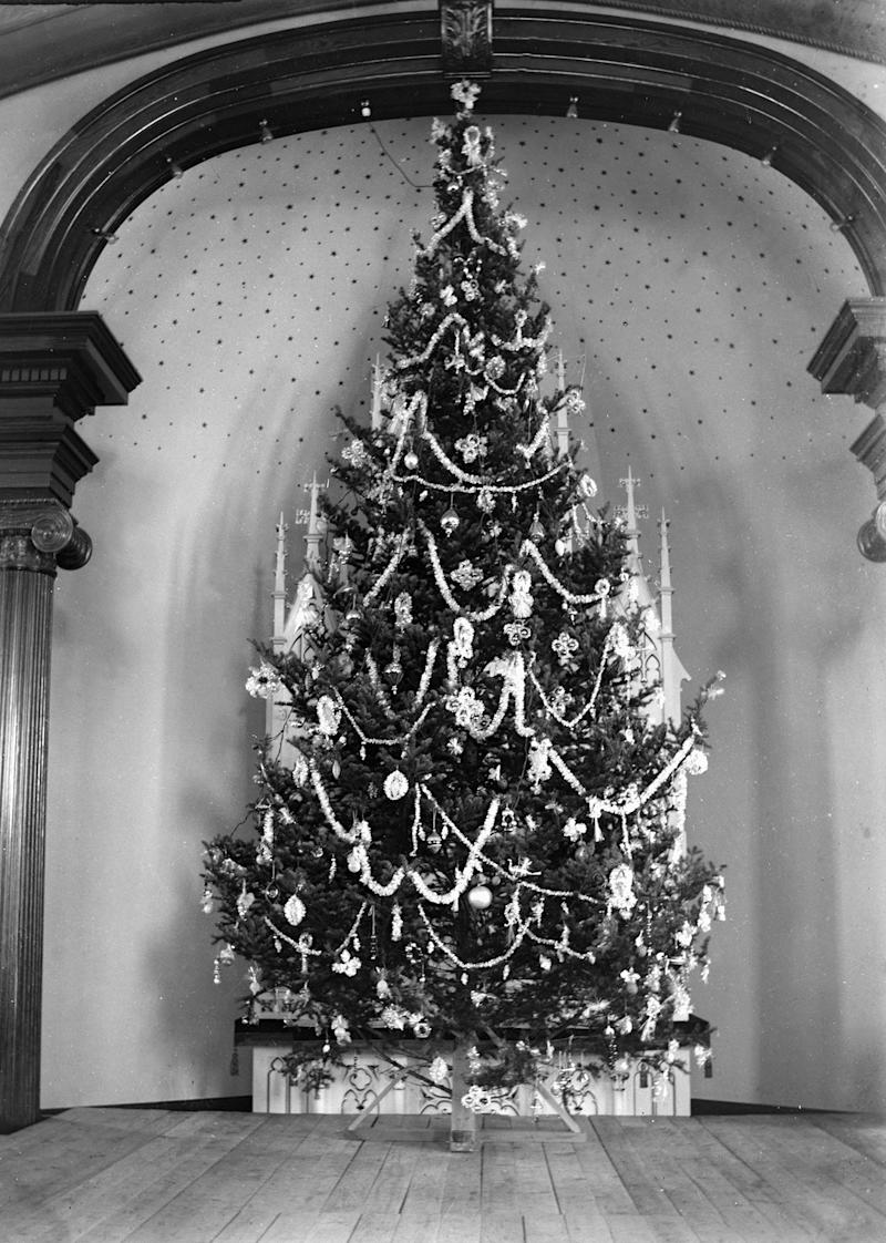 Where Did the Tradition of the Christmas Tree Come From?