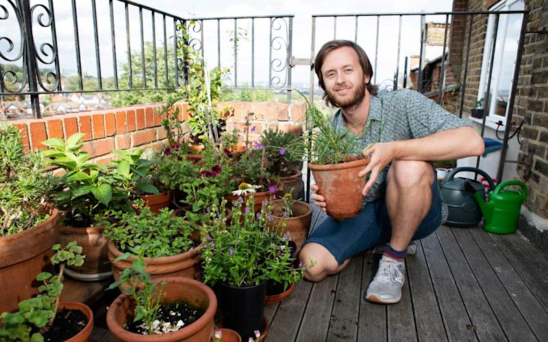 Going green: Tomé Morrissy-Swan shows off the array of plants on his balcony -  Rii Schroer