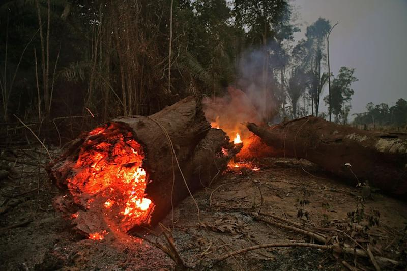 View of fire in the Amazon rainforest, near Abuna, Rondonia state, Brazil, on August 24, 2019.