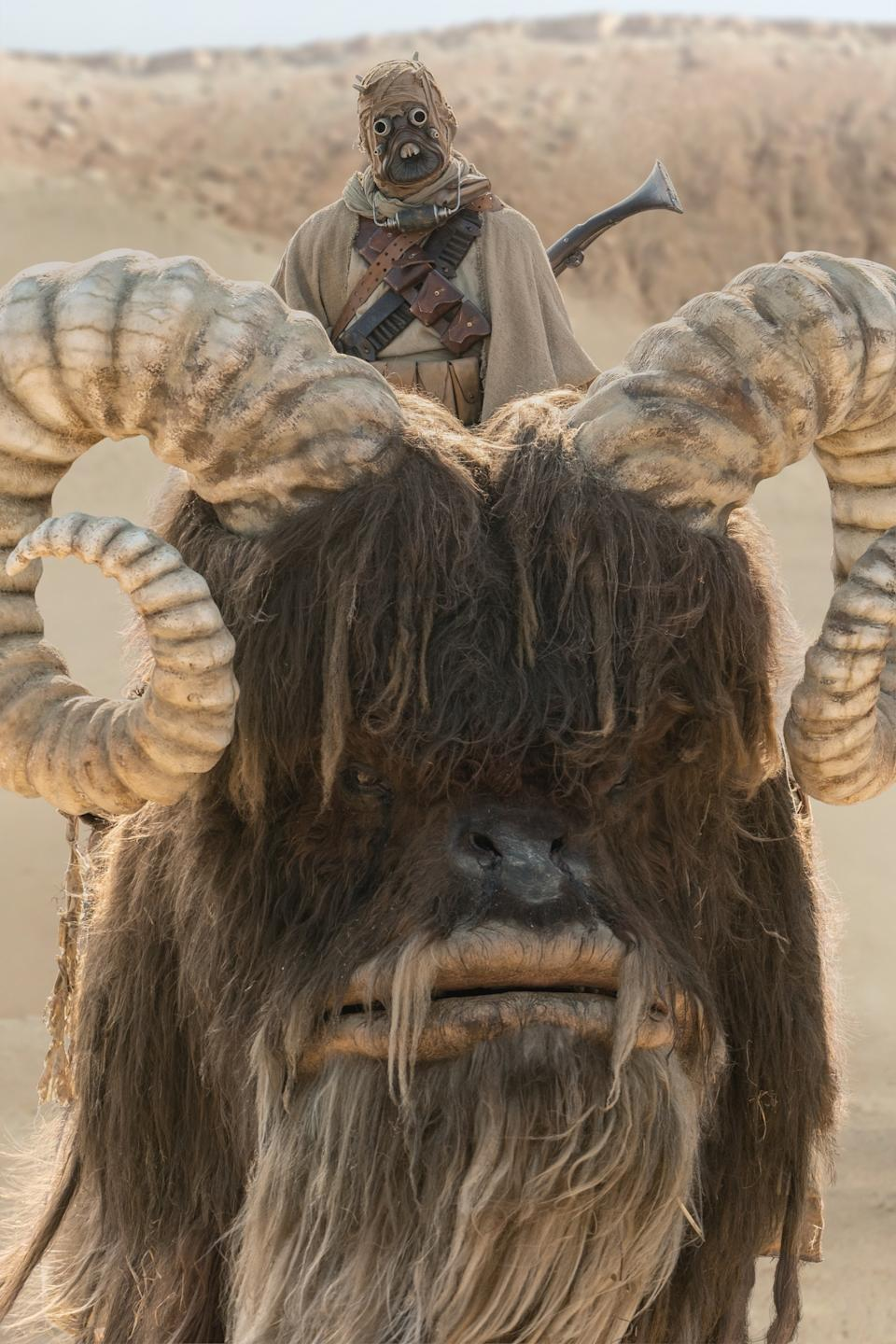 A Tusken Raider atop a Bantha in a still from The Mandalorian S2. (Disney+)
