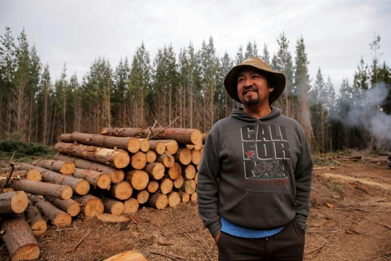 Juan Pichun, the leader of a radical Mapuche organization, says a new constitution will not make up for the injustice committed against indigenous people (AFP/Javier Torres)