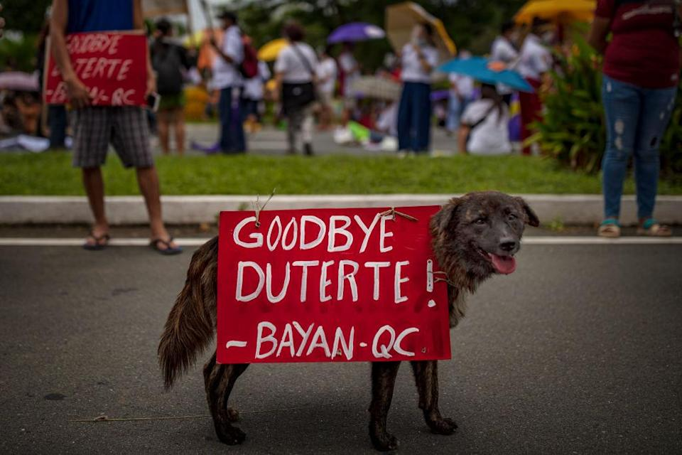"""A dog is seen with placard as Filipino protesters attempt to march towards Philippine Congress to call for an end to Duterte's presidency on July 26, 2021 in Manila, Philippines.<span class=""""copyright"""">Ezra Acayan/Getty Images</span>"""