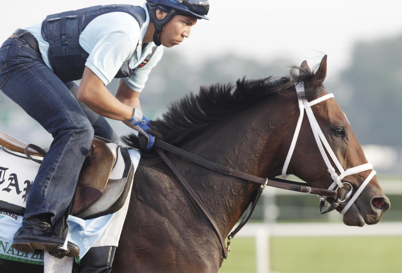 Overanalyze gallops on the track at Belmont Park during a morning workout Thursday, June 6, 2013 in Elmont, N.Y. Overanalyze is entered in Saturday's Belmont Stakes horse race. (AP Photo/Mark Lennihan)