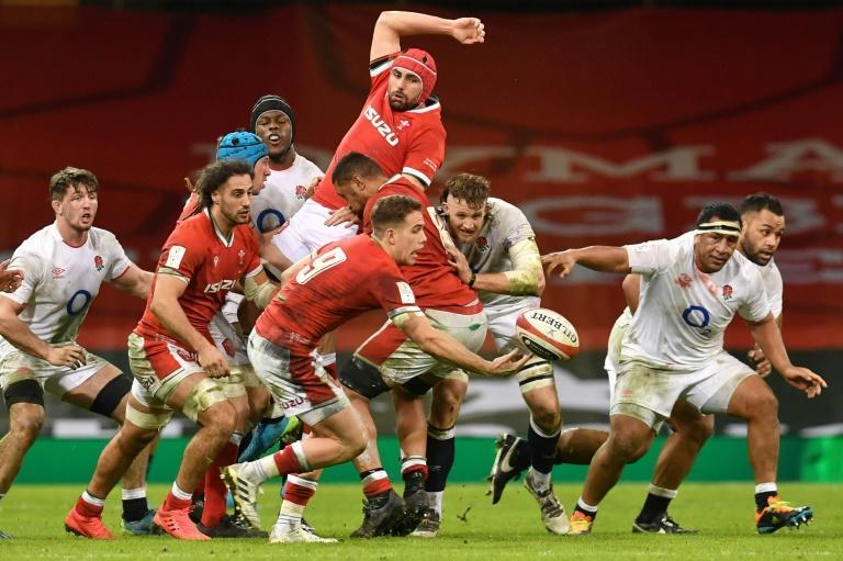 Scrum-half Kieran Hardy and fly-half Callum Sheedy appear set to be the future for Wales at half-back after successive impressive performances in the Six Nations