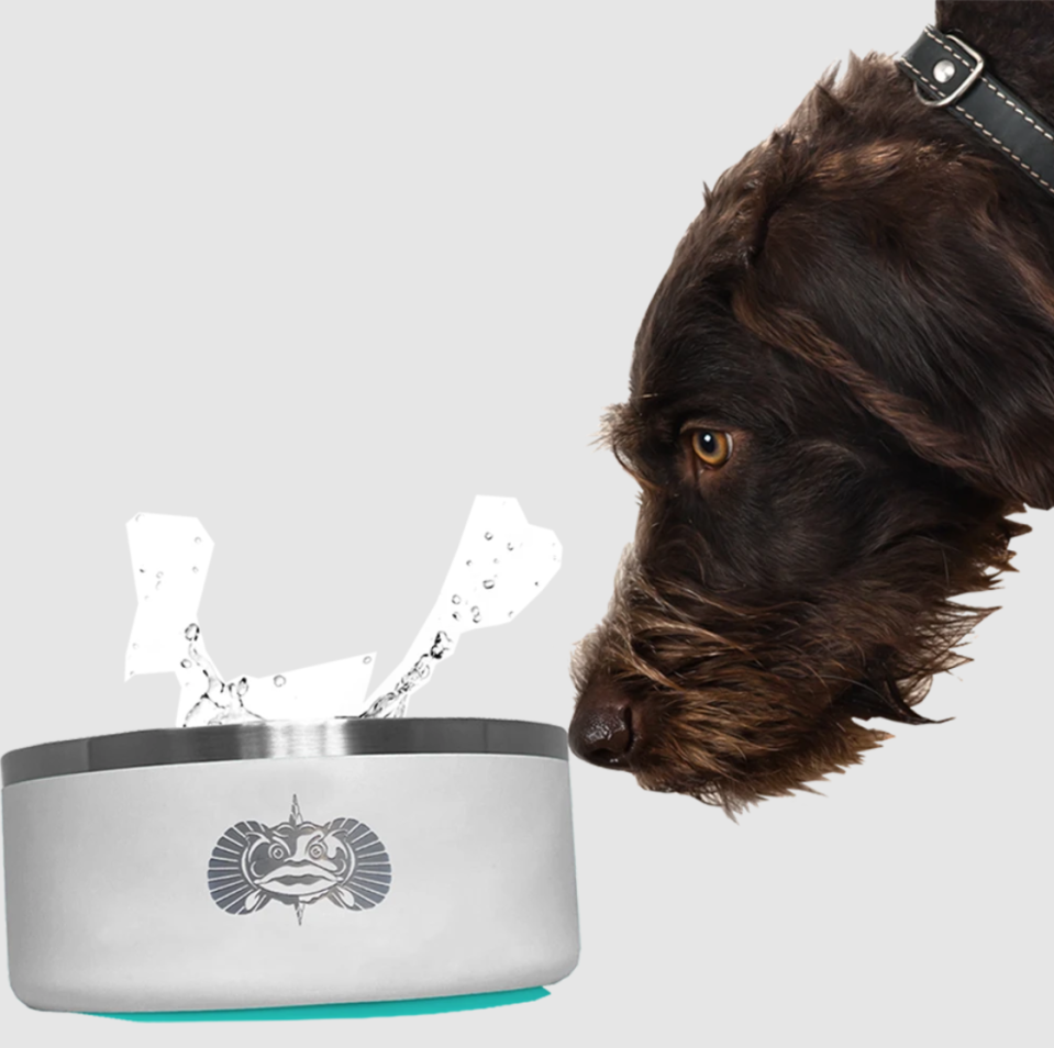 <p>This big, no-spill bowl keeps your pet hydrated and your floors dry. </p> <p><strong>Buy it!</strong> Non-Tipping Dog Bowl, $48.00; <span>ToadfishOutfitters.com</span></p>