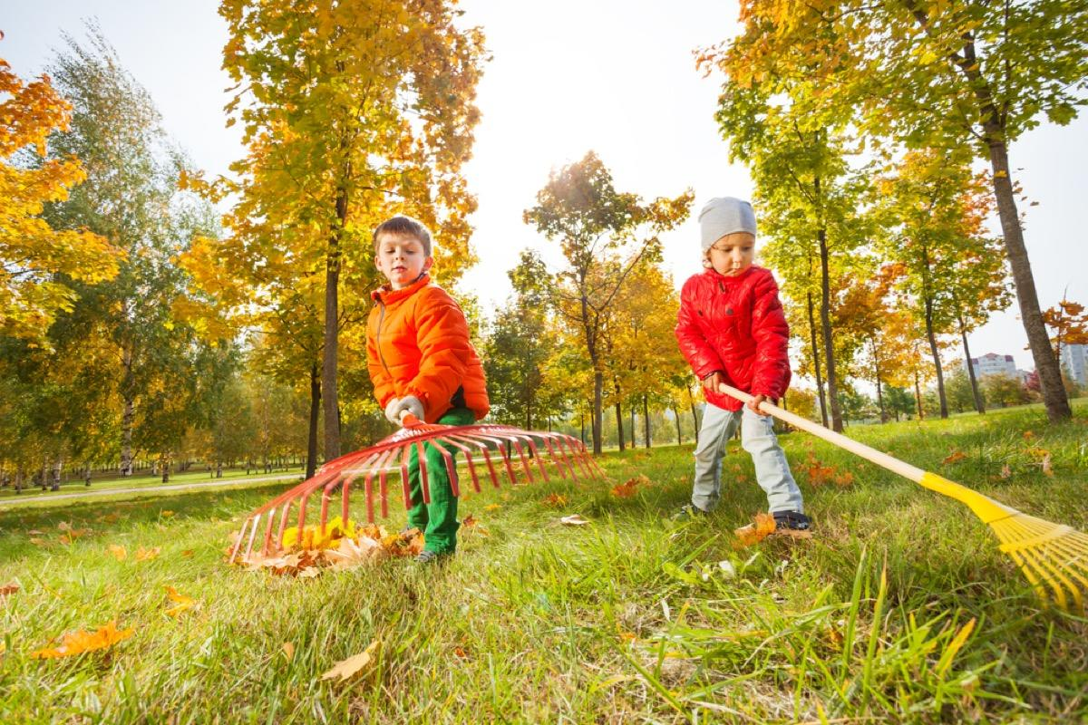 """In order to keep your yard healthy all winter long, leave raking leaves <em>off</em> your fall to-do list. """"Fallen leaves act as a wonderful winter blanket for soil, insulating the plants roots and preventing erosion,"""" says gardening expert <strong>Stephanie Rose</strong>, the founder of <a href=""""https://gardentherapy.ca"""" target=""""_blank"""">Garden Therapy</a> and author of the upcoming book <a href=""""https://fave.co/36lyGUv"""" target=""""_blank""""><em>Garden Alchemy</em></a>.  In leaving your leaves alone, Rose says you'll provide food and shelter for wildlife throughout the winter and maintain your garden's delicate ecosystem in the process. Plus, from an aesthetic perspective, this will also """"provide winter interest as seed heads and branches become decorated with snow,"""" she notes."""