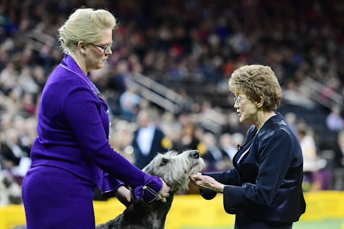 Patricia Trotter judges during the Hound Group at the 143rd Westminster Kennel Club Dog Show at Madison Square Garden on February 11, 2019 in New York City.