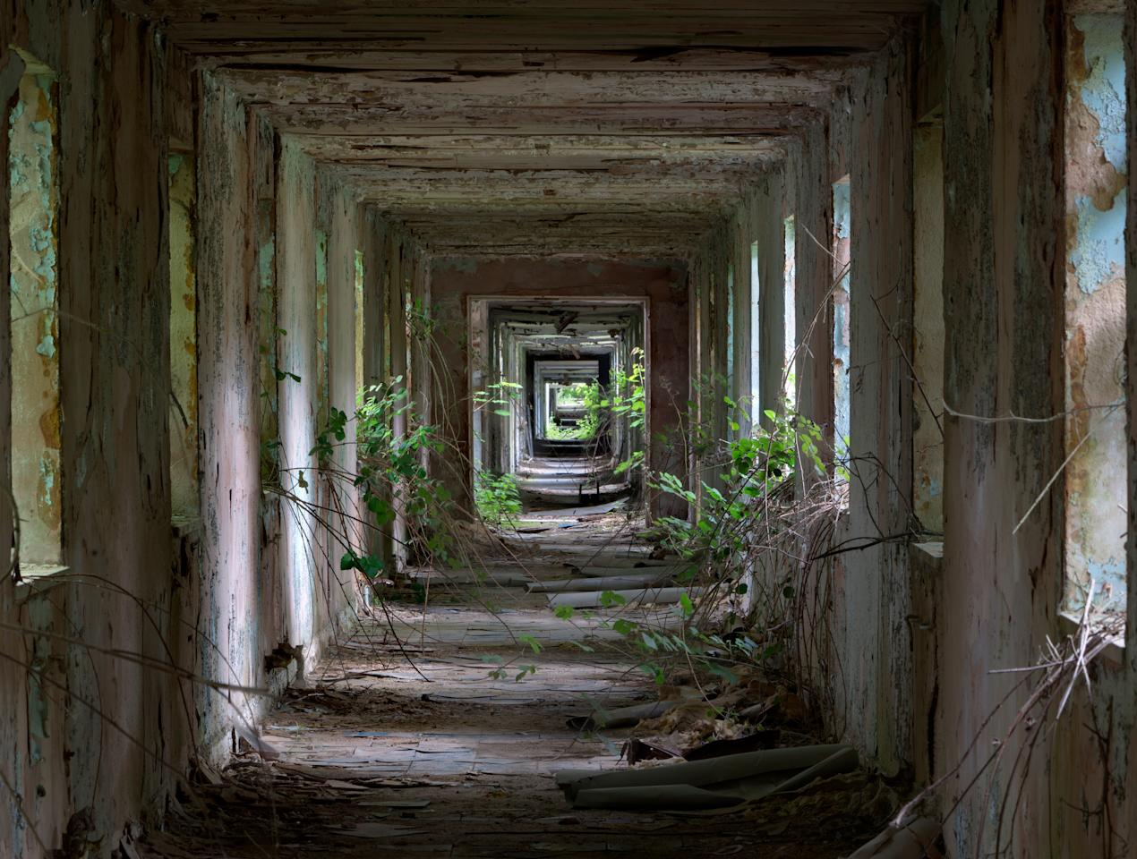 <p>The overall winning image was shot by Matt Emmett from Reading and taken at RAF Nocton Hall, an abandoned former military hospital. He takes home the £2,500 prize. (Historic Photographer of the Year) </p>