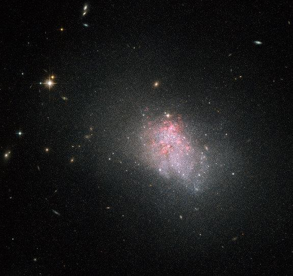 This image from NASA's Hubble Space Telescope shows the faint irregular galaxy NGC 3738, which is in the midst of a violent episode of star formation, as evidenced by the red glow of hydrogen gas surrounding the galaxy.