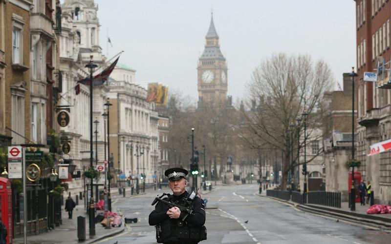 Police activity on Whitehall - Credit: Jonathan Brady/PA
