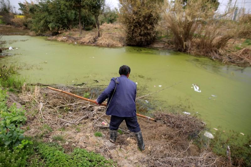 China to curb farming near rivers in push to reverse water pollution - official