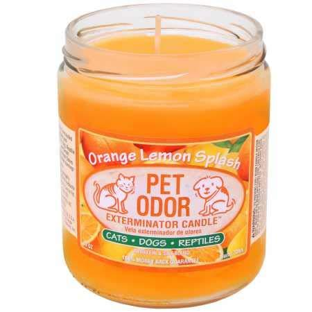 Pet Odor Exterminator Candle Orange Lemon Splash Jar (13 oz) (Amazon / Amazon)