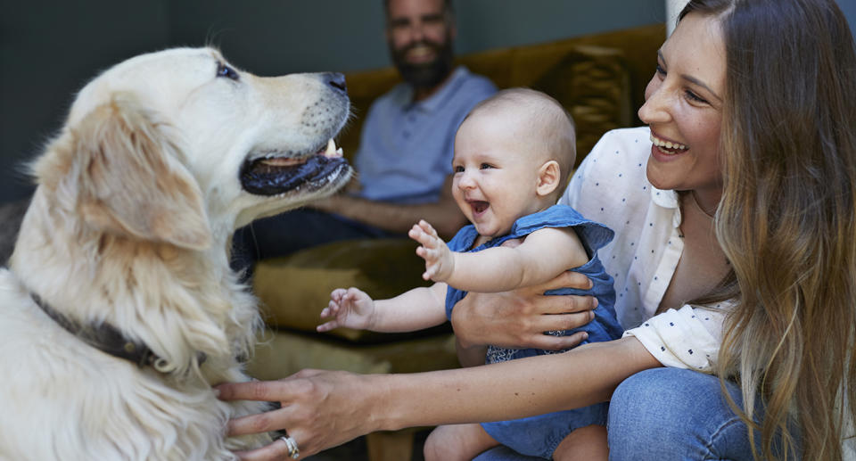 Woman and baby play with a dog as man watches on. Source: Getty Images