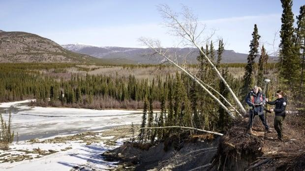Researchers examine the site of a landslide caused by melting permafrost near Whitehorse. (GBP Creative - image credit)